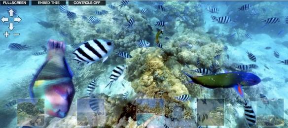 Underwater Panorama
